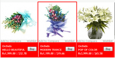 FlowerNFerns coupons
